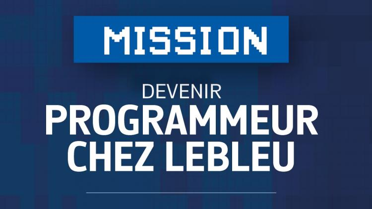 4933 Lebleu Plan Marketing Emploi Program V2 22
